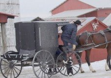 Amish 11-Year-Old Patient Ordered into Chemotherapy by Judge
